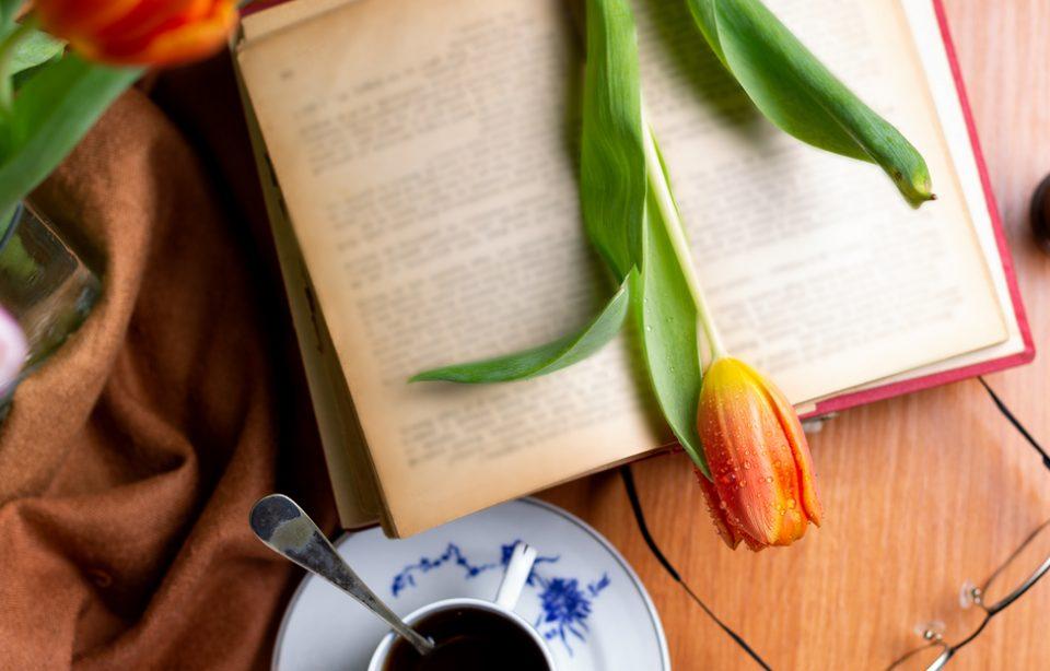 Te deprimă vremea? Citește cărți care te binedispun!